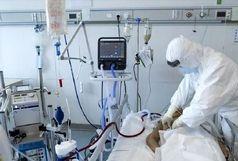 ۲۴۸ بیمار کرونا در ایلام بستری هستند