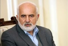«احمد توکلی» برای وزیر نفت نامه نوشت