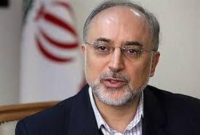 صالحی به مدیرکل آژانس انرژی اتمی نامه نوشت+جزییات