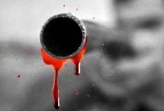 قتل با اسلحه شکاری