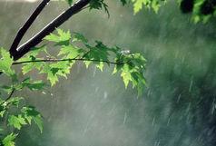 باد و باران در اکثر نقاط کشور