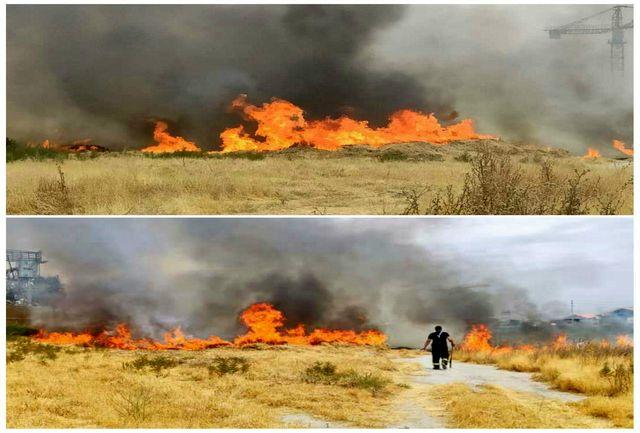 اطفای حریق علوفه هرز در محدوده کمربندی چیتگر/ آتش سوزی های سریالی در اراضی کشاورزی شهرستان قدس
