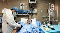 ثبت ۳۶ مورد جدید مبتلا به کرونا در استان بوشهر