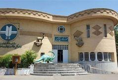 بازدید از موزه تاریخ طبیعی اداره کل حفاظت محیط زیست زنجان برای عموم رایگان خواهد بود