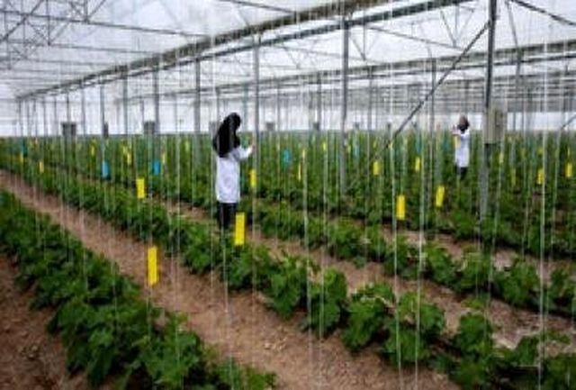 راهاندازی پلمپ قرنطینهای محمولههای گیاهی صادراتی در استانها