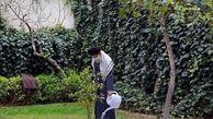 امسال رهبر انقلاب درخت خرمالو و نارنج کاشتند
