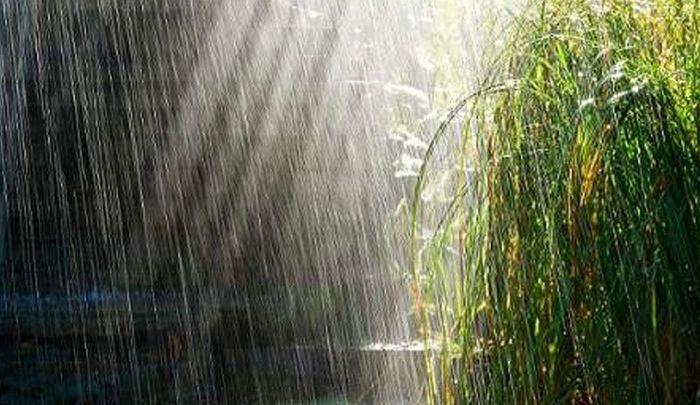 ایلام رتبه چهارم بارشهای کشور را کسب کرد
