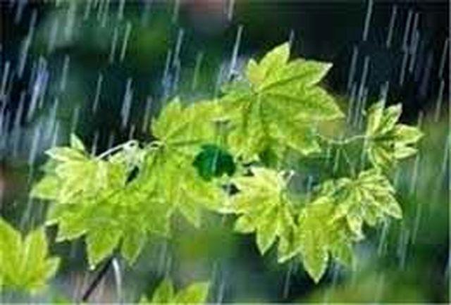 بارش پراکنده در پایتخت از فردا/ بارش برف در مناطق سردسیر