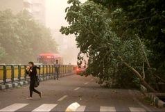 باد شدید در راه تهران!
