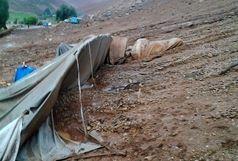 امداد رسانی به مناطق سیل زده جنوب و شرق کرمان در حال انجام است