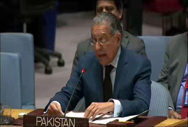 پاکستان با افزایش اعضای دائم شورای امنیت مخالفت کرد
