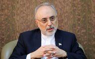 پیام تسلیت علی اکبر صالحی در پی درگذشت معاون پیشین سازمان انرژی ایران