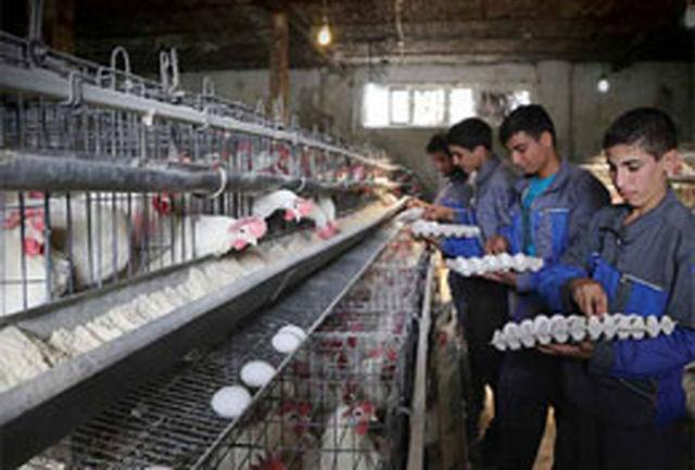 260 رشته در هنرستان های کار و دانش اصفهان  آموزش داده می شود