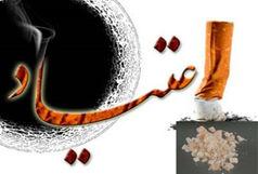 اعلام زنگ خطر شورای شهر همدان  برای مصرف سالویا در مدارس و دانشگاه ها