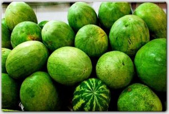 بیشترین میزان سموم در هندوانه و گوجه