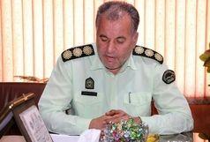 کشف 1400 قلم اشیای تاریخی در استان