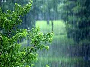 باران و وزش باد شدید در راه است