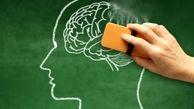 مواد غذایی ضد آلزایمر چیست؟