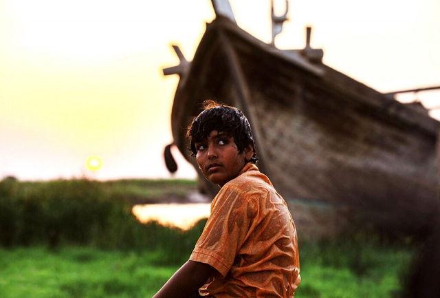 چهار فیلم جایزه سینمایی ققنوس  را به خانه بردند