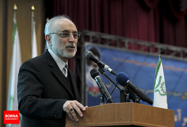 تامین مالی عامل کندی تکمیل نیروگاههای ۲ و ۳ بوشهر است