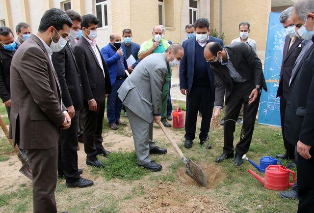 خوزستان در زمینه بیابان زدایی موفق بوده است