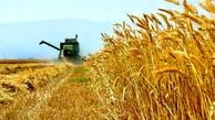 ۳۵۰ میلیارد ریال تسهیلات در بخش کشاورزی قم پرداخت شد