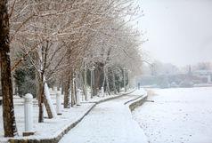 تهران سفیدپوش شد +فیلم