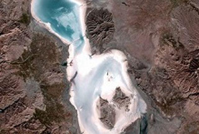 پارک ملی دریاچه ارومیه میزبان 500 قطعه پرنده غول پیکر