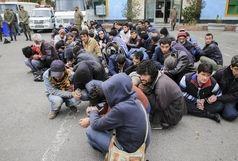 دستگیری ۵۰۱ معتاد، سارق و خرده فروش مواد مخدر در بندرعباس