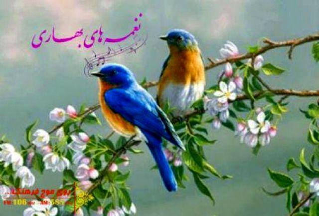 بهاریه خوانی ملک مسعود را در  «نغمههای بهاری» بشنوید