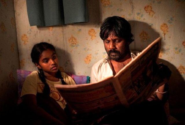 فیلم برنده جشنواره کن، بهترین فیلم فستیوال میامی