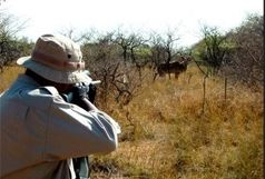 دستگیری شکارچی متخلف در الیگودرز