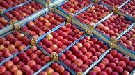 شناسایی بازارهای جدید برای صادرات سیب جهت صادرات سیب آذربایجان غربی