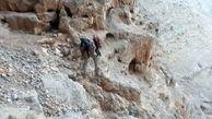 محبوس شدن مرد جوان در کوه صفه