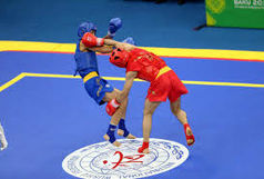 کسب 9 مدال توسط ورزشکاران ایلام