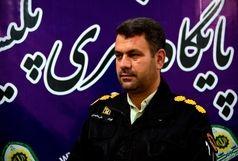 دستگیری سارق احشام در شهرستان دره شهر