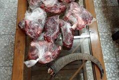 دستگیری شکارچی با دو قبضه اسلحه قاچاق در رودبار