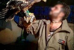 فروش عقاب به عنوان حیوان خانگی در فضای مجازی