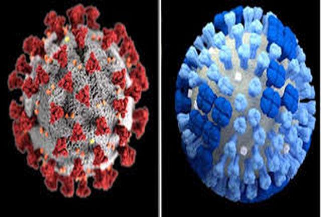 فقط این علائم به شما می گویند آنفلوآنزا گرفتهاید یا کرونا؟!