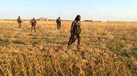 ارتش سوریه نیروهای بیشتری را به شرق فرات اعزام کرد