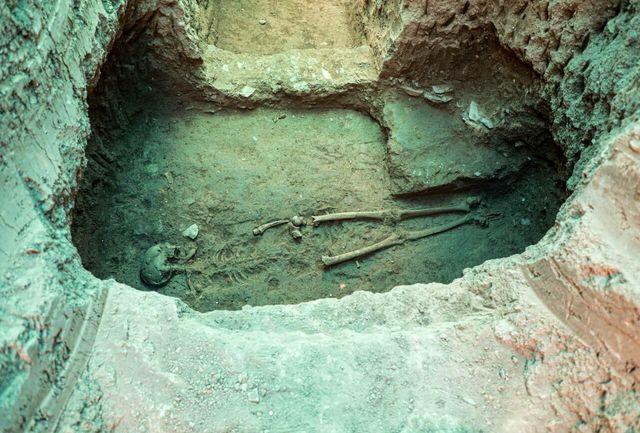 روایتهایی عجیب و غریب از تجربه زندگی با مردگان