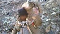 ۲۰۹ شکارچی غیر مجاز در زنجان دستگیر شدند