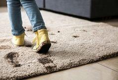عوارض وحشتناک پاکیزه نبودن فرش ها بر سلامت انسان