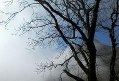 کاهش تدریجی ناپایداری هوا در گیلان