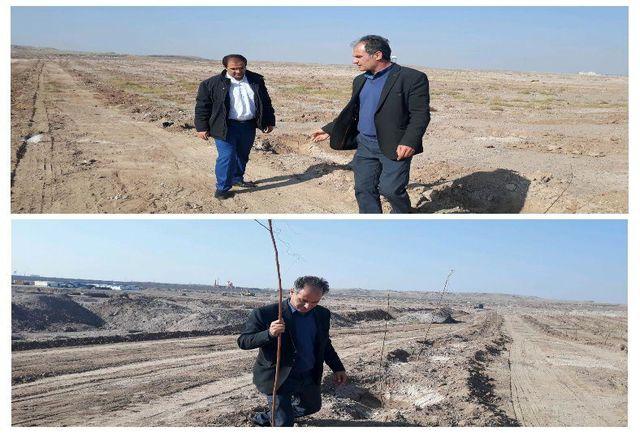 کاشت  1000 اصله نهال در پارک جنگلی نصیر شهر