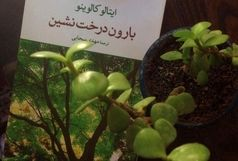 «بارون درختنشین» رمانی علیه رسوم متعارف تمدن