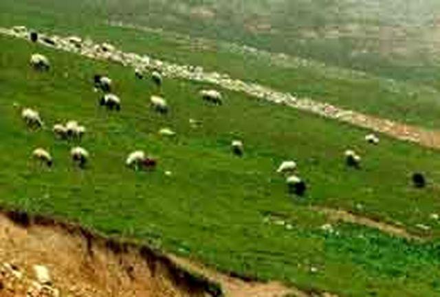 استقبال مسافران نوروزی از مناطق عشایر نشین چهارمحال وبختیاری