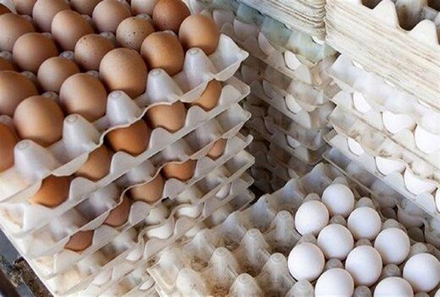 قیمت تخم مرغ تا 5 روز دیگر اصلاح میشود/ سهمیهها به زودی به دست تولیدکنندگان میرسد