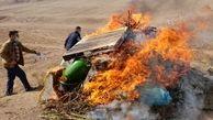 یک تن مواد مخدر در استان قزوین امحا شد