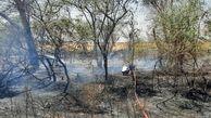 آتش سوزی درختان و فضای سبز جاده خرمشهر مهار شد+ببینید